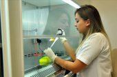 Türkiye, koronavirüsle mücadele ederken 7 ilimizde Kırım Kongo Kanamalı Ateşi hastalığı patlak verdi