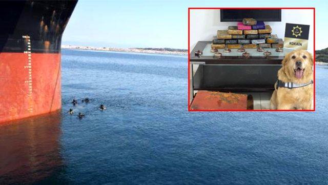 Çanakkale'de bir gemide, 50 milyon lira değerinde uyuşturucu madde ele geçirildi